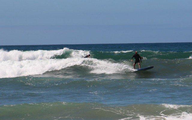 wavecrest-woodie-show-surfer